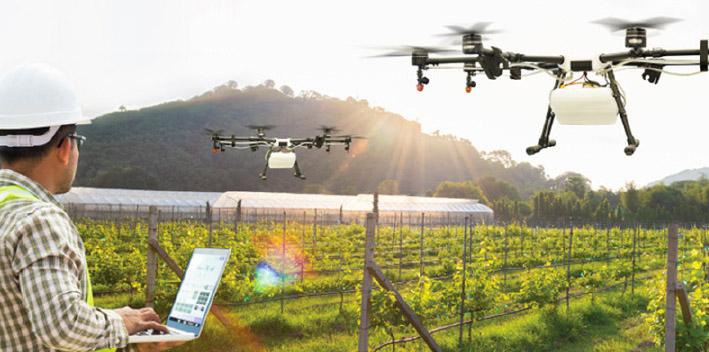 Agricoltura 4.0: robot e droni